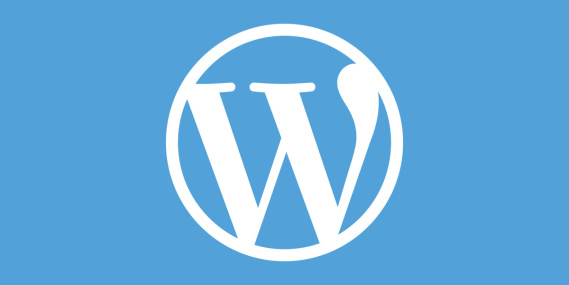 wordpress hacks for small business