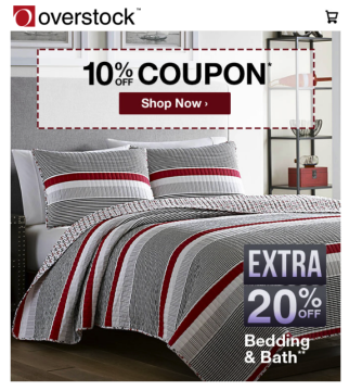 overstock sales promotion example