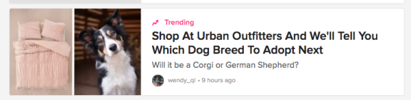 Buzzfeed quiz post for Urban Pipeline